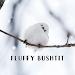 Download Cute Wallpaper Fluffy Bushtit Theme APK